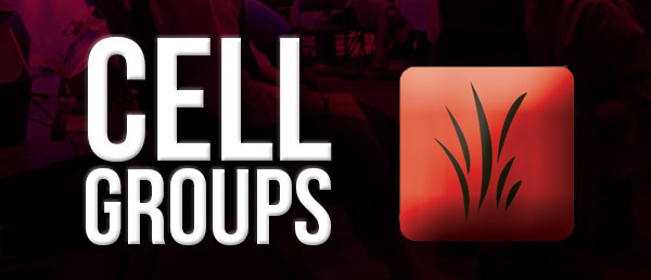 Cell Group Survey for Seeds community