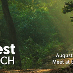 Forest Church will go ahead…meet at the eXchange @ 10:45 am