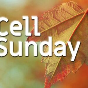 Cell Sundays – Youth Edition