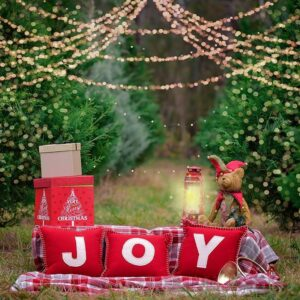 December 19 – Picnic by the tree!