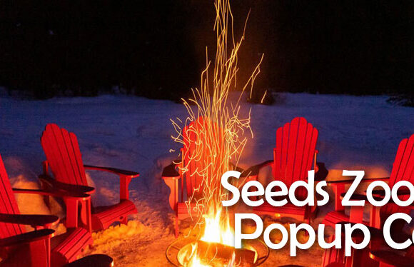 Seeds in-person Pop up Cell on Sunday, April 25 @ 10:45 am